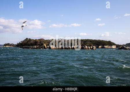 Matsushima Bay has over 260 tiny islands and considered to be one of Japan's Three Great Sights - Nihon Sankei. - Stock Photo