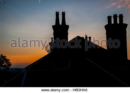 Wimbledon London, UK. 11th November 2016. Steam billows from chimney rooftops silhouetted against a  beautiful autumn - Stockfoto