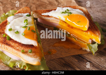 Cut in half sandwich with a fried egg, ham and cheese close-up on the paper on the table. horizontal - Stockfoto