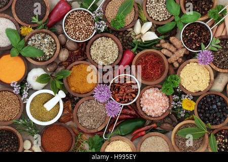 Herb and spice seasoning in wooden bowls, scoops and mortar with pestle.  High in antioxidants and vitamins. - Stock Photo