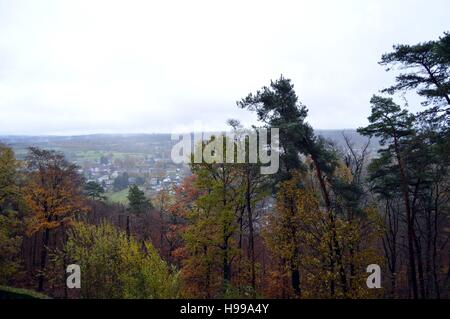 Valley and forest in the colors of autumn by a temp of rain well gray - Stock Photo