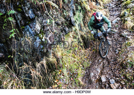 Kinlochleven, Scottish Highlands, UK. 20th November 2016. Mountain bikers compete in an enduro on the snow laden - Stock Photo