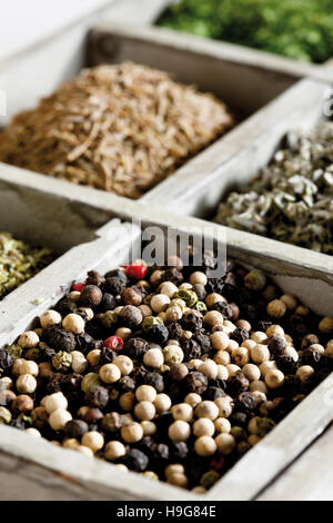 Spices in a case, pepercorns - Stock Photo