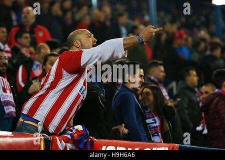 Madrid, Spain. 19th Nov, 2016. Atletico Madrid fan Football/Soccer : Spanish 'La Liga Santander' match between Atletico - Stockfoto