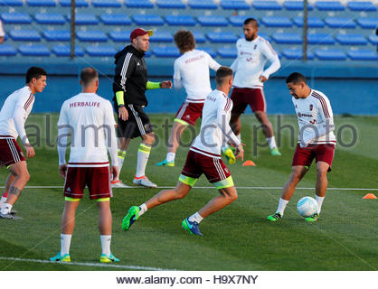 Football Soccer - Venezuela training - World Cup Qualifiers - Montevideo, Uruguay 4/10/16. Venezuela's soccer team - Stock Photo