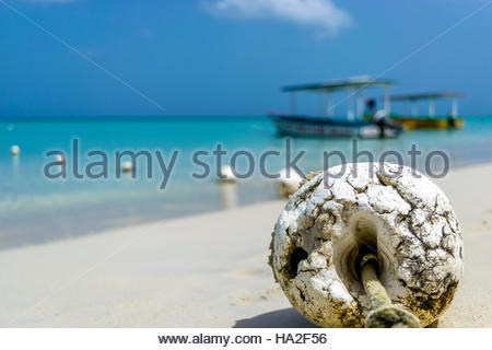 Beach Buoys - Stock Photo