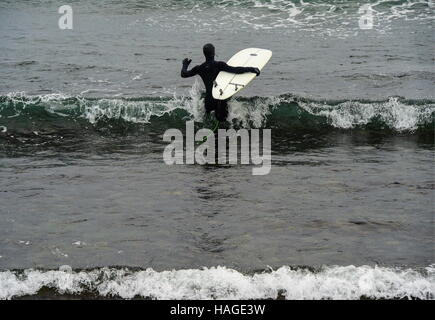 Vladivostok, Russia. 1st Dec, 2016. A man with his surfboard in the Ussuri Bay. Credit:  Yuri Smityuk/TASS/Alamy - Stockfoto