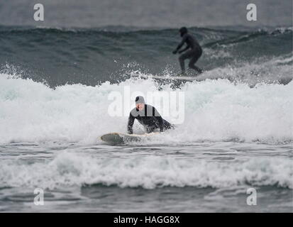 Vladivostok, Russia. 1st Dec, 2016. Surfers riding a wave in the Ussuri Bay. Credit:  Yuri Smityuk/TASS/Alamy Live - Stockfoto