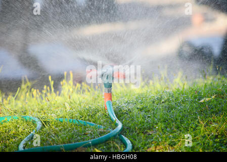 plastic water sprinkler - Stock Photo