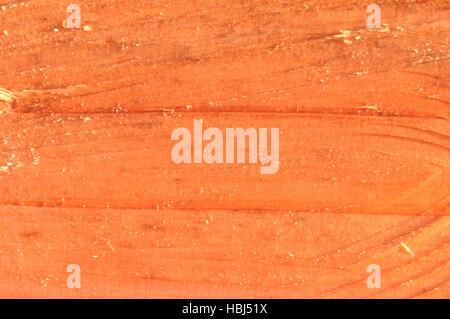 Surface wood from sequoia - Stock Photo