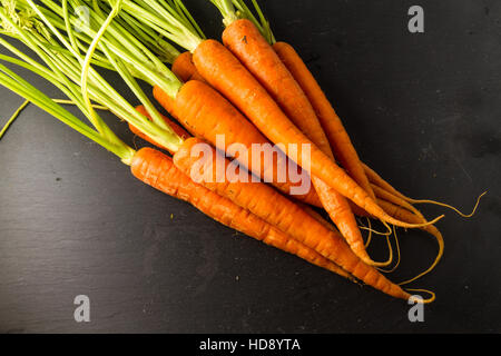 Carrots or Daucus carota bunch with leaves on a dark slate background. - Stockfoto