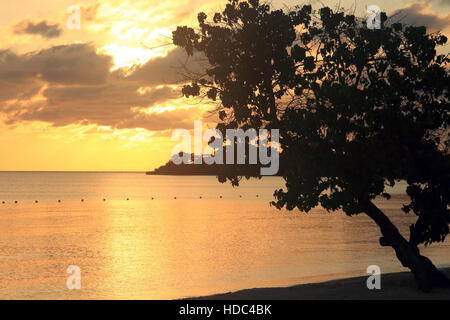 Negril beach in Jamaica - Stock Photo