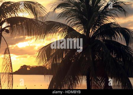 Caribbean, Negril beach in Jamaica - Stock Photo