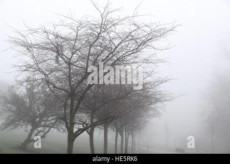 Alexandra Palace, North London, UK. 17th Dec, 2016. View of dense morning fog on Alexandra Palace © Dinendra Haria/Alamy - Stock Photo