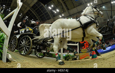 London, UK. 17th Dec, 2016. Olympia The London International Horse Show at Grand Hall Olympia London UK. The FEI - Stock Photo