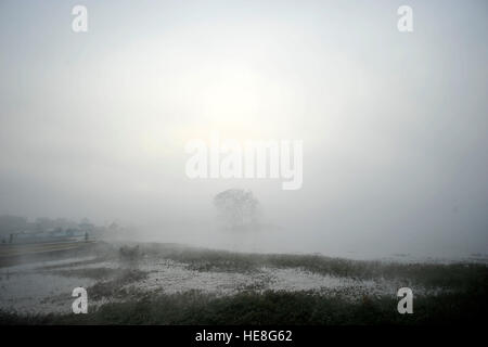 Kathmandu, Nepal. 18th Dec, 2016. A view Taudaha lake during a misty morning as the sun rises over at the Taudaha - Stock Photo