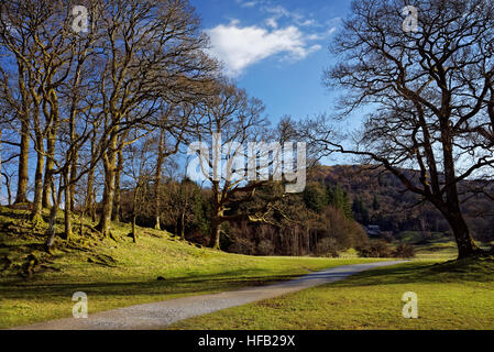 UK,Cumbria,Lake District,Footpath next to River Brathay near Elterwater - Stock Photo