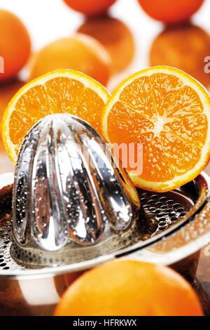 Oranges (Citrus), citrus juicer - Stock Photo