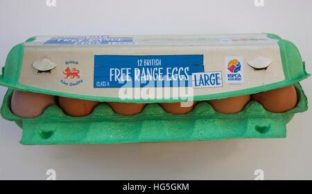 Twelve large British brown free range eggs in green egg box RSPCA Assured - Stock Photo