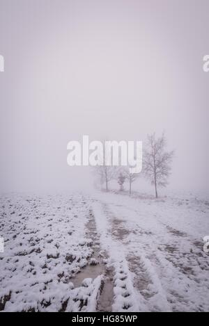 Vertical photo of winter landscape with heavy morning fog. Few trees are visible next to broken road or footpath. - Stock Photo