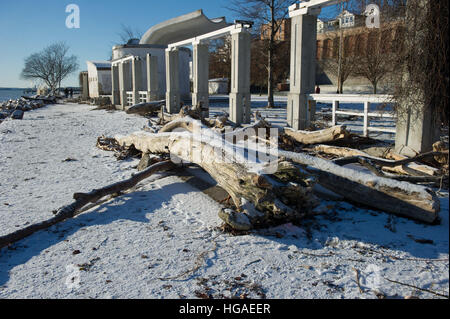 Sassnitz, Germany. 06th Jan, 2017. Fallen trees lie on the beach in the Baltic resort town of Sassnitz, Germany, - Stock Photo