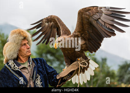 mongolian kazakh eagle hunter in traditional dress with