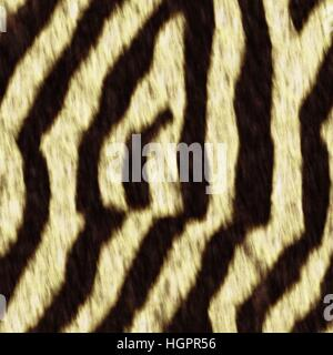 seamless texture of zebra - Stock Photo