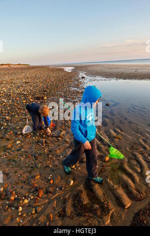 Bound Brook Island Beach Wellfleet