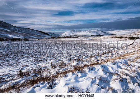 Dryhope, Yarrow, Selkirk, Scottish Borders, UK. 13th January 2017. A winter landscape is viewed while looking west - Stockfoto