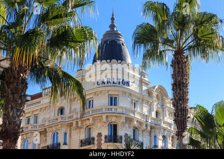 Carlton Hotel and palm trees, La Croisette, Cannes, French Riviera, Cote d'Azur, Alpes Maritimes, Provence, France - Stock Photo