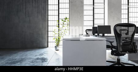 Office workspace in clean minimalist interior style, room with high windows, green plant and concrete floor and - Stock Photo
