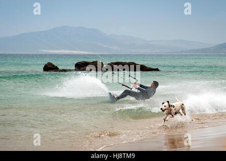 Man kitesurfing and dog running on beach, Los Lances, Tarifa, Cadiz, Andalucia, Spain - Stock Photo
