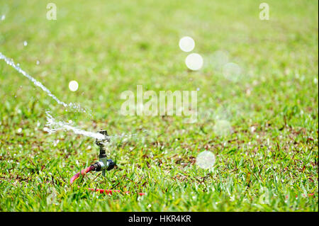 close up of water sprinkler on lawn in green grass - Stock Photo
