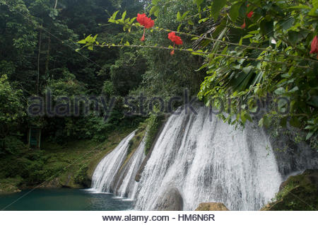 A stunning view of Reach Falls, framed by tropical flowers. - Stock Photo