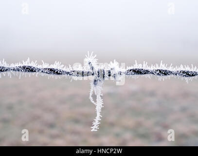 Close-up view of a wire fence with frost with ice crystals under a ...