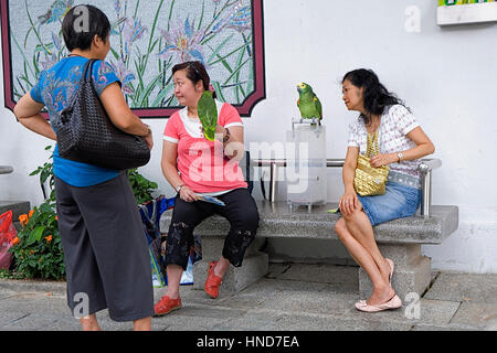 how to get to lantau island from tsim sha tsui