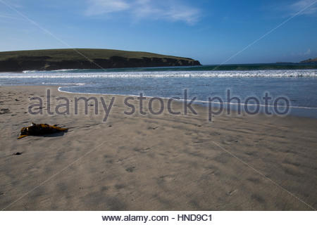 Sandscape Landscape of St. Ninian's Isle - Stock Photo