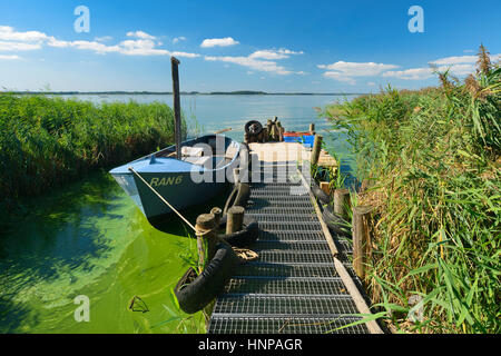 Dock with fishing boat on the Achterwasser, Lieper Winkel, Usedom Island, Baltic Sea, Mecklenburg-Western Pomerania, - Stock Photo