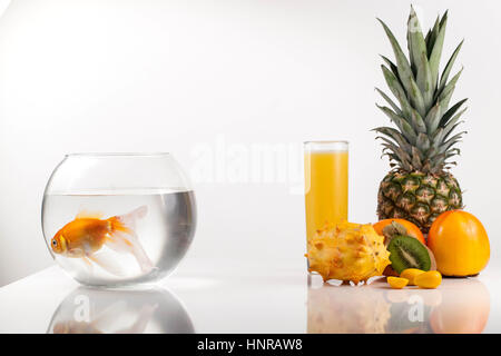 Tropical fruits and aquarium with golden fish. COmposition on a white background - Stock Photo