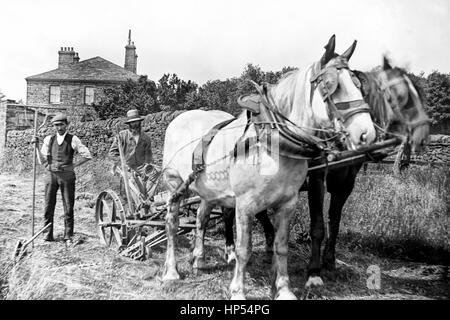 A farmer in Keighley, Yorkshire shows his new Bamford Grass cutter. Photograph taken in 1910. With thanks to Roy - Stock Photo