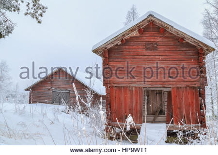 barracks in snow in a forest , winter, mountain landscape during falling snow - Stockfoto