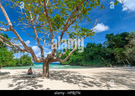 Jamaica Port Antonio Frenchmens Cove beautiful beach in a tropical garden with a mineral river - Stock Photo