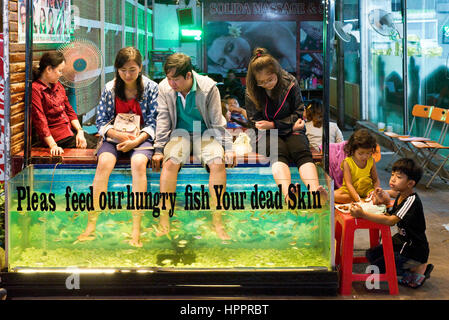 Fish foot massage siem reap cambodia indochina for Fish spa near me