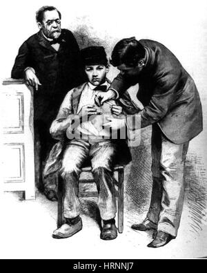 An Inoculation for Hydrophobia, 1885 - Stockfoto
