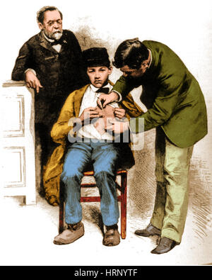 Louis Pasteur Supervising Rabies Inoculation, 1885 - Stock Photo