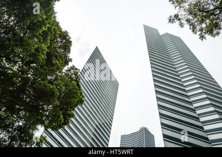 Three skyscrapers and green trees on the sky background in Singapore. View from below. Horizontal. - Stock Photo