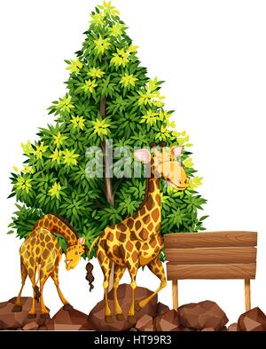 Two giraffes by the wooden sign illustration - Stock Photo