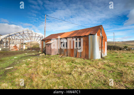 A rusty old corrugated metal shack - Stockfoto