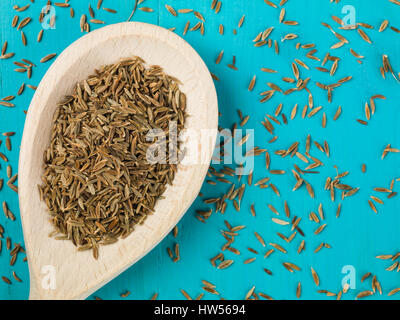 Spoonful of Dried Cumin Seeds Spice - Stock Photo