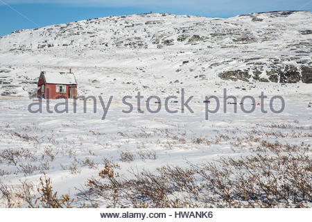 lone red greenlandic home snowy landscape - Stock Photo